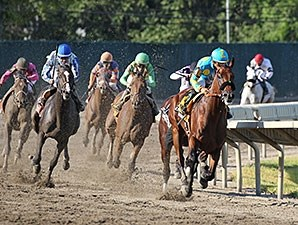 Triple Crown winner's victory solidifies Haskell's status