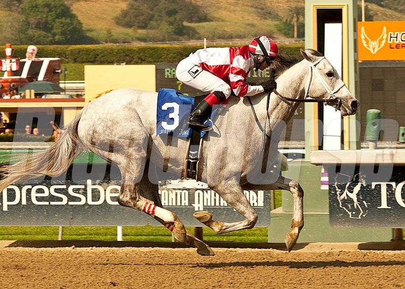 Fox Hill Farms' Joyful Victory and jockey Rosie Napravnik win the $300,000 Santa Margarita Stakes (gr. 1) at Santa Anita Park.