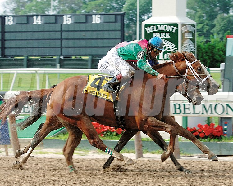 Wildcat Bettie B wins the Prioress Breeders' Cup Stakes (gr. 1) at Belmont Park on July 8, 2006.