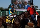 Zayat Wants 'Pharoah' to Run in Travers