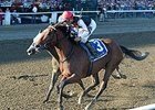 Texas Red, Others Work at Spa Toward Travers