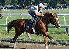 Lea works at Saratoga Aug. 3.