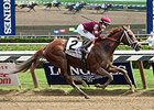 "Sheer Drama<br><a target=""blank"" href=""http://photos.bloodhorse.com/AtTheRaces-1/At-the-Races-2015/i-8bGHmWM"">Order This Photo</a>"