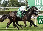 "Isotherm won the 2015 Pilgrim Stakes on the Belmont Park inner turf.<br><a target=""blank"" href=""http://photos.bloodhorse.com/AtTheRaces-1/At-the-Races-2015/i-pHqztBn"">Order This Photo</a>"