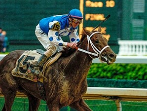 Smarty Jones, the 3-year-old champion male of 2004, is genetically a sprinter