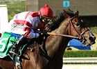 Songbird 'Wonderful' in Santa Anita Drill