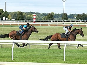 Green Mask, front, The Great War, back, works at Keeneland Sept. 27.