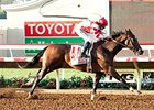Songbird Takes Centerstage in Chandelier