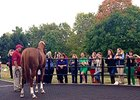 Fans greet California Chrome at Taylor Made Stallions on Sept. 25.