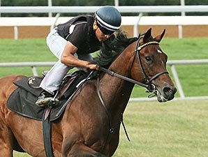 Green Mask works at Keeneland Sept. 27.