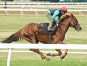 Undrafted works at Keeneland Sept. 27.
