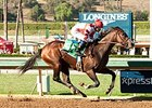 Songbird vs. 'Valentina' in Juvenile Fillies