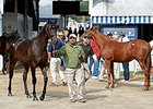 Through 11 of 12 sessions, Keeneland has sold 2,575 yearlings for $279,977,300