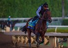 American Pharoah works at Santa Anita September 21.
