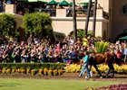 Triple Crown champ American Pharoah made a very special guest appearance between races on Sunday at the Del Mar Thoroughbred Club, much to the delight of thousands of fans who reveled in their last chance to see the superstar at the seaside oval.