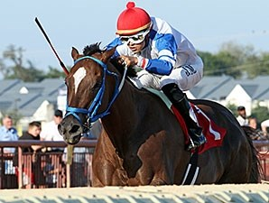 Russell Road wins the 2015 Roger Ramey Handicap.