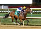 Super Majesty Tops Fasig-Tipton Day 1 Watch List