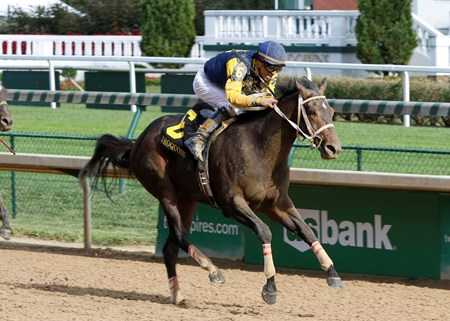 Finding two-turn racing to his liking, Cocked and Loaded used a powerful move in the far turn to open a clear advantage and was not threatened in the stretch in winning the $150,000 Iroquois Stakes (gr. III) at Churchill Downs.
