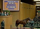 Hip 365, a Medaglia d'Oro colt was purchased for $1.1 million.