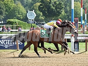 Royal Posse wins the 2015 Evan Shipman Stakes.
