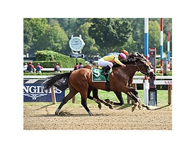 Royal Posse, who wuns in the Claiming Crown Jewel, won the Evan Shipman Stakes on Sept. 4.