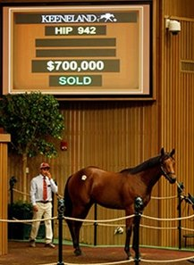 Hip 942, a bay colt by Uncle Mo brought a winning bid of $700,000.