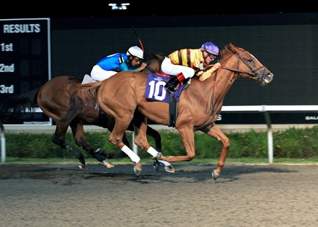 Wise Dan wins the Presque Isle Mile Stakes September 9, 2011.