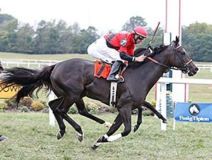 Kiss Moon won the Fasig-Tipton Ladies Turf Stakes on closing day at Kentucky Downs.