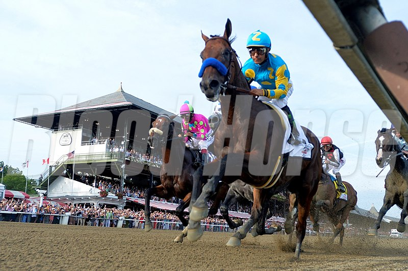 American Pharoah with jockey Victor Espinoza leads the field in to the first turn of 146th running of the Travers Stakes Saturday evening Aug. 29, 2015 at the Saratoga Race Course in Saratoga Springs, N.Y.
