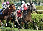 Ironicus to Miss Breeders' Cup With Fracture