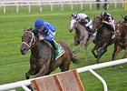 Sentiero Italia Impresses in Sands Point