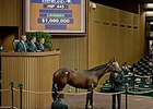 Hip 443, a filly by Fastnet Rock, brought $1 million.