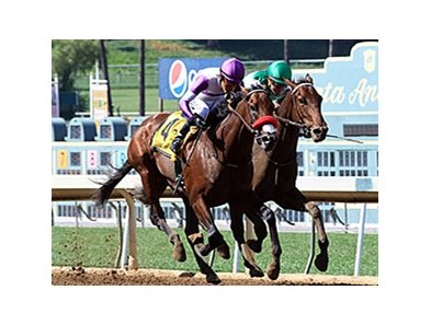 Swipe (inside) runs second to Nyquist in 2015 FrontRunner