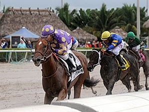 Ballet Diva wins the 2015 Florida Sire Susan's Girl Stakes.