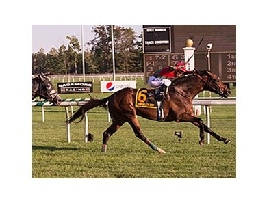 One Go All Go won the Commonwealth Derby at Laurel Park on Sept. 19.