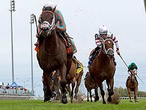 Conquest Daddyo delivers an upset win in the Summer Stakes.