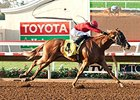 Smokey Image Faces Tough Test in CA Cup Derby