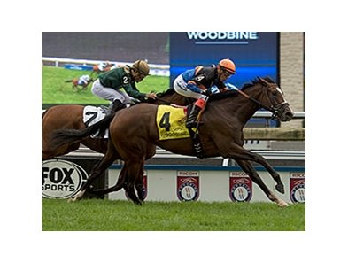 Strut the Course wins the Canadian Stakes.