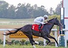 WinStar's Tourist Shines at Kentucky Downs