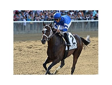 "Wedding Toast has won her last three races, including the Beldame on September 26.<br><a target=""blank"" href=""http://photos.bloodhorse.com/AtTheRaces-1/At-the-Races-2015/i-cZFrrQn"">Order This Photo</a>"