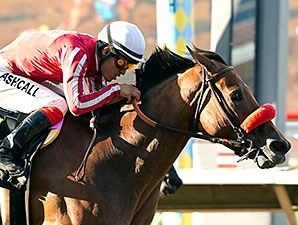 Wild in the Saddle wins the 2015 Tranquility Lake Stakes.