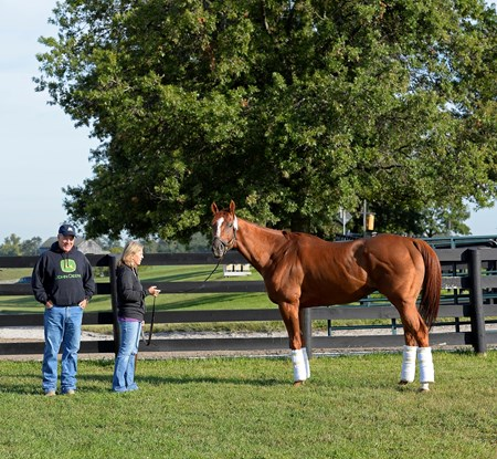 Wise Dan with Charlie and Amy LoPresti at Keeneland, near Lexington, KY.