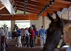 'Breakout' Colt Highlights Keeneland Session
