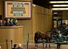 Hip 1206, a bay colt by Flatter out of Breeders' Cup Juvenile Fillies (gr. I) winner Caressing, was purchased for $425,000.