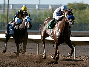 Amaranth wins the 2015 Asparagus Stakes.