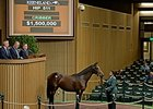 Hip 511 by Bernardini sold for $1.5 million