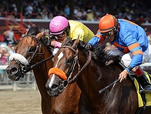 Royal Posse (left) outfinishes Saratoga Snacks to win the Evan Shipman.