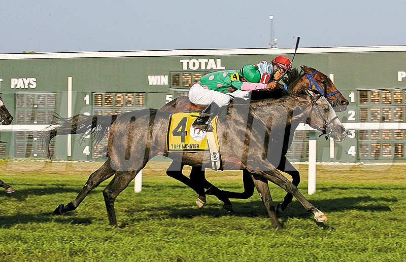 Pure Sensation and Mongolian Saturday battled throughout the $300,000 Turf Monster Handicap, with Pure Sensation narrowly prevailing in a pulsating finish at Parx Racing.