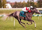 Onus won the Commonwealth Oaks on September 26.