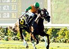 Om Makes the Grade in Del Mar Derby